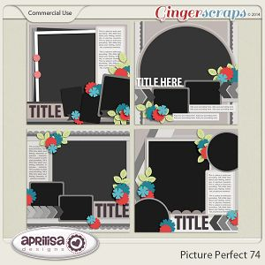 Picture Perfect 74