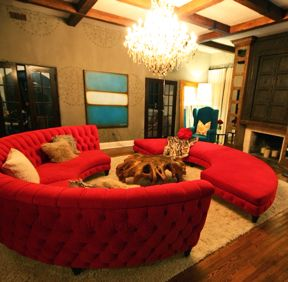 A Living Room Inspired By The Bonnet House In Ft. Lauderdale By Designers  David Bromstad, Patricia Rothman And Gina Carballo, For Color Splash On HGTV . Part 35