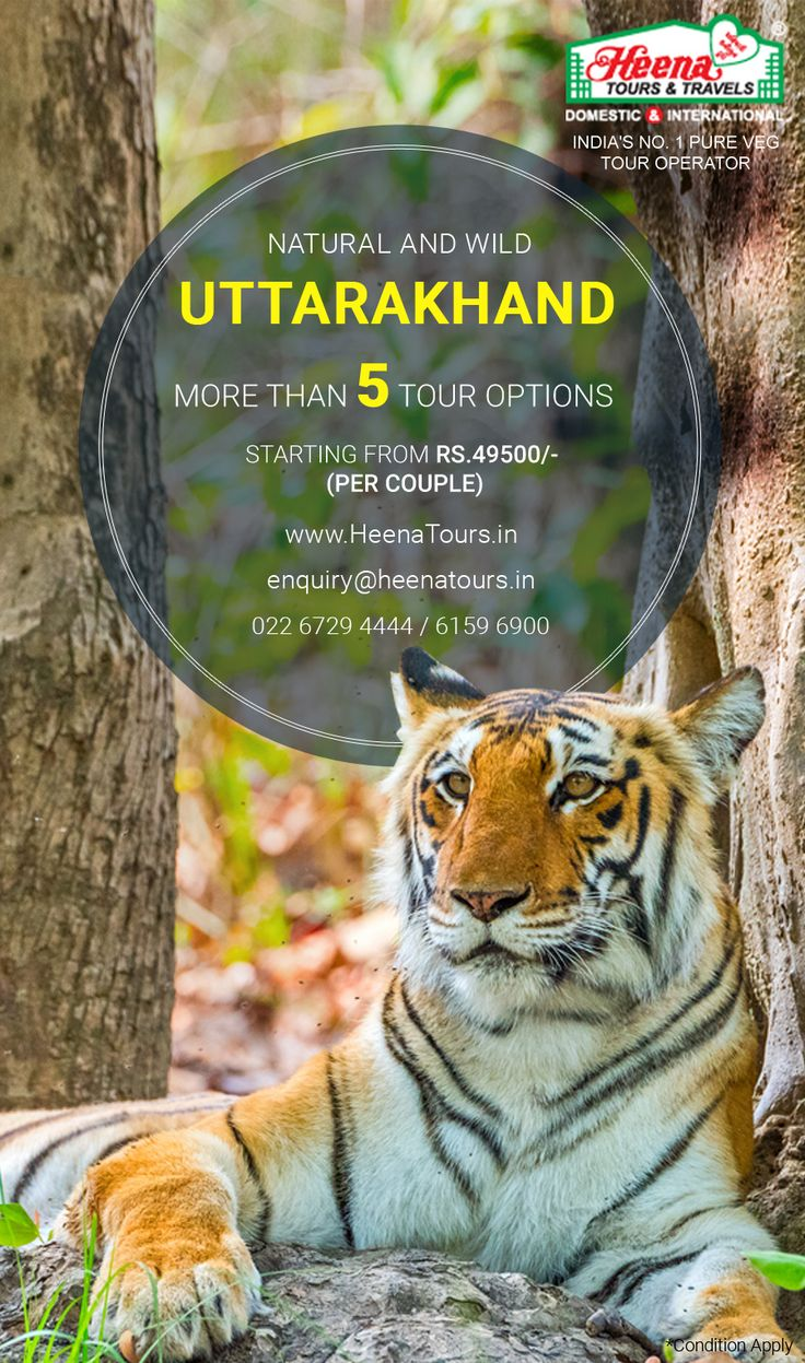 Uttarakhand - Natural and Wild..!! A place that offers the bounty of nature, along with the thrills of hiking through the dense forests, Uttarakhand is ideal for one and all. Explore the Wildlife, Experience the Adventures like Paragliding, Skiing, Trekking, Rafting, Camping etc. Book Uttarakhand holiday tour packages from Heena Tours.