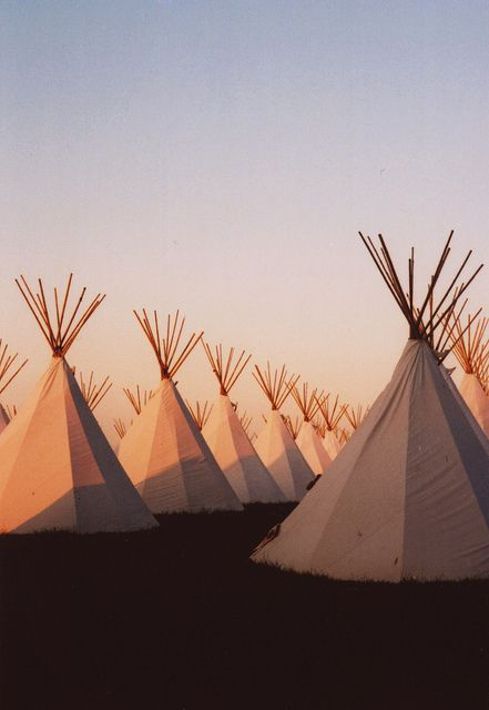 @sfgirlbybay / victoria smith / victoria smith  Glastonbury Festival... land of tipis (tepees and teepees!)    by mister sullivan, via Flickr
