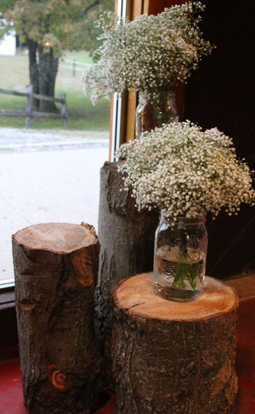 tree stumps decor