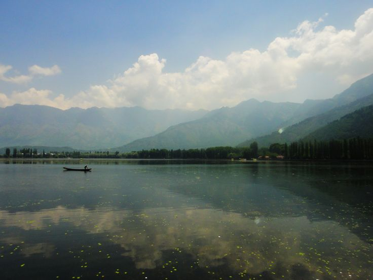 Dal lake:A nature's mirror