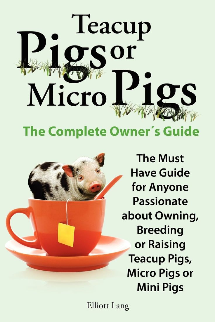 Teacup Pigs and Micro Pigs, the Complete Owner's Guide Price:$13.99