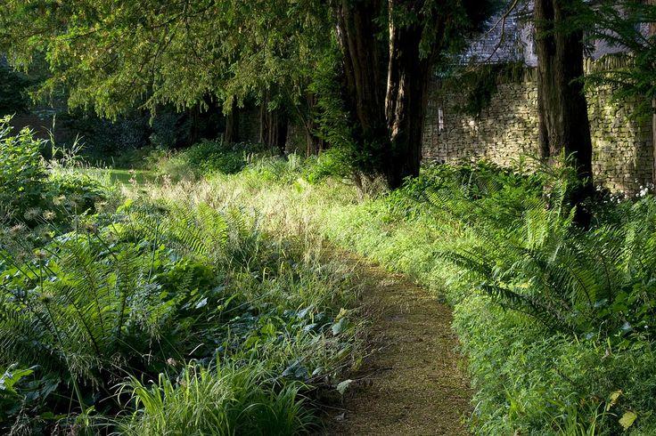 Gloucestershire, woodland planting — Dan Pearson Studio