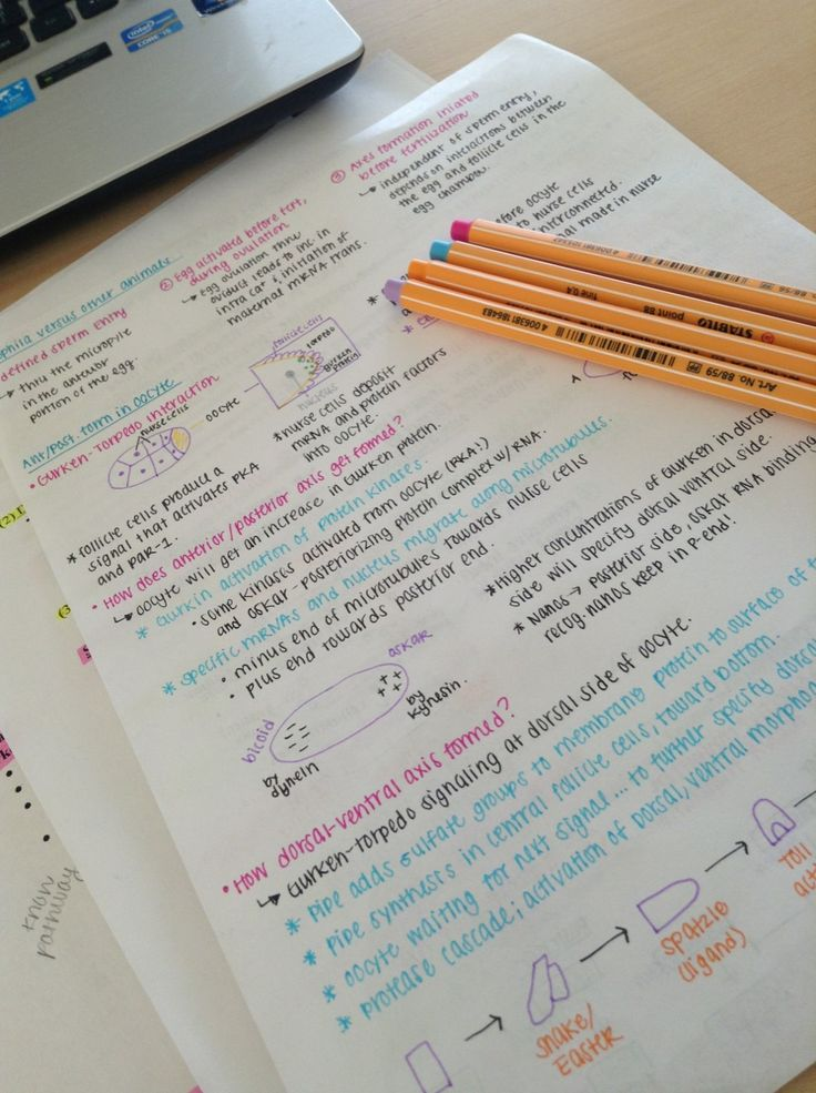 amnafbaby: Werkin' hard on developmental bio.. Can you tell I'm over the cold.. Spring colors! Lol