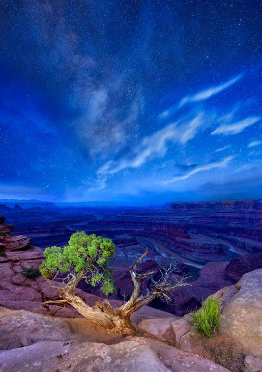 Under Milky Way Skies - The Canyonlands National Park, Utah
