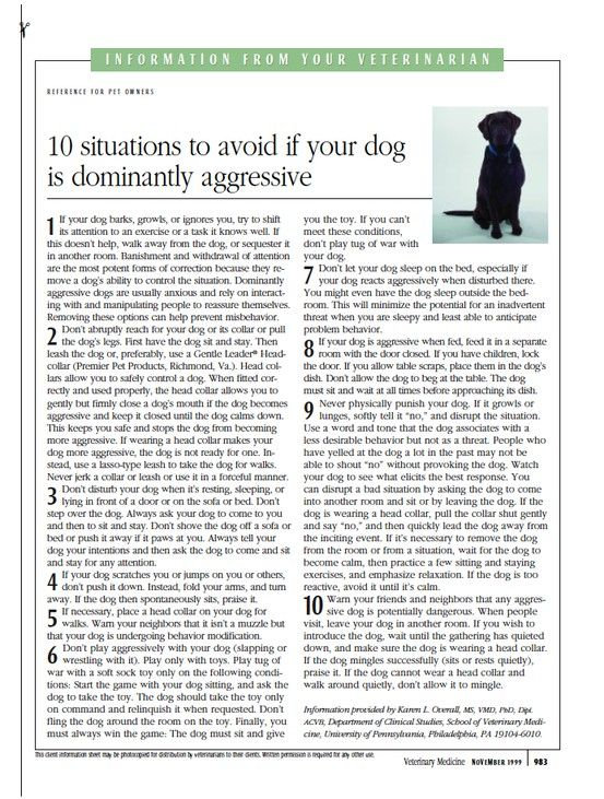 Handout: 10 situations to avoid if your dog is dominantly aggressive - dvm360