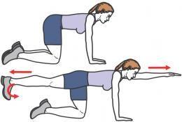 6 exercices pour muscler son dos | Muscler le dos ...