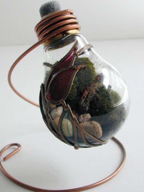 Light Bulb Terrarium! Recycling light bulbs into mini habitats :)