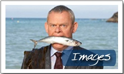 This show Doc Martin just grows on you! I am not an old lady but this is just a delight to watch for any age. I can't seem to pinpoint why. Give it a try. Funny touching interesting with the medical issues.