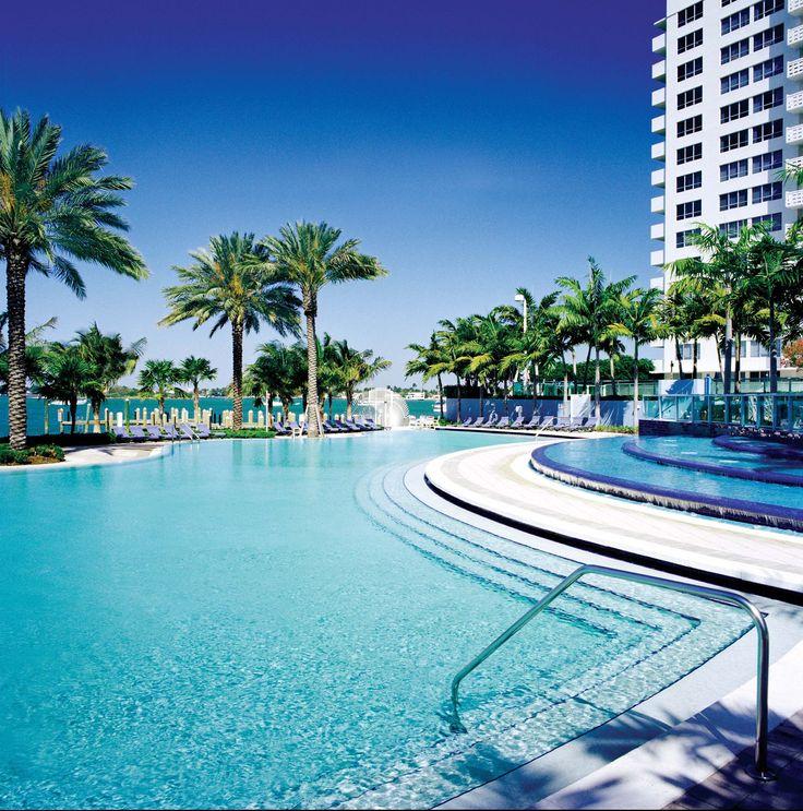 Where To See Flamingos In Miami Beach