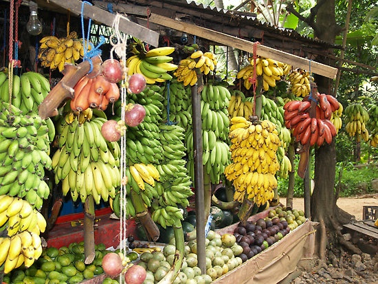 Sri Lanka. I miss the 50+ types of bananas although I probably only had less than 10 types
