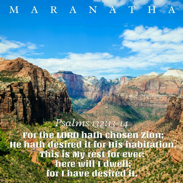 Zion, the dry place in the storm, picture of Grace #Psalms 132:1-18 (KJV)