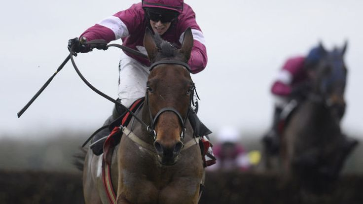 Steel poses Vautour threat - Horse Racing - Erupt Sports