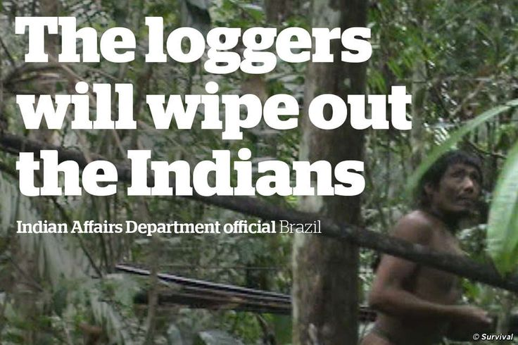 http://www.survivalinternational.org/tribes/kawahiva