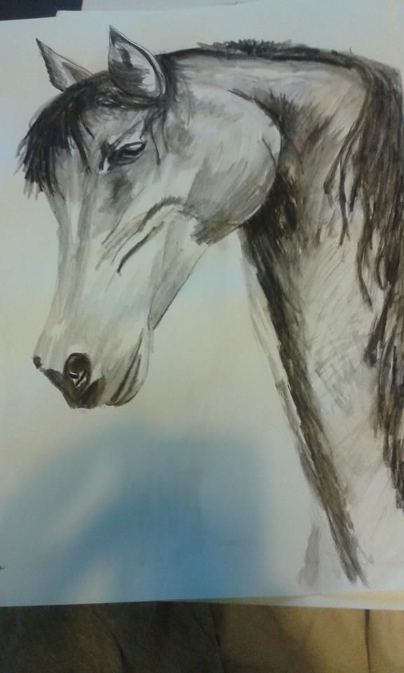 horse in water colour