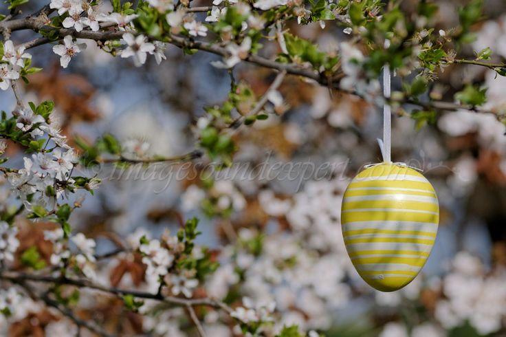 decor paste, easter decorations, Osterdeko, décorations de Pâques,