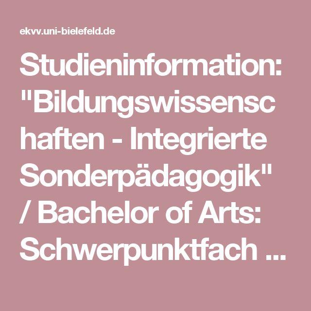 Bachelor's Essay