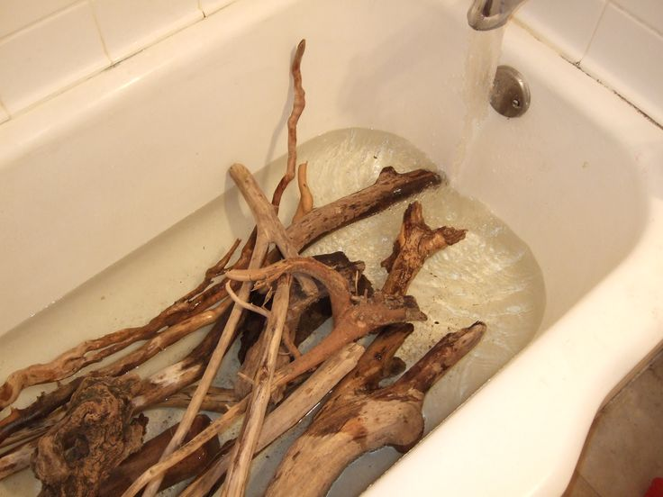 How sterilize Driftwood - soak the driftwood in a bathtub full of water for a couple hours. Put the driftwood in the oven, between 250F and 300F, with the oven door either slightly open or closed until it has baked dry, 1-3 hrs depending on how thick the piece is.