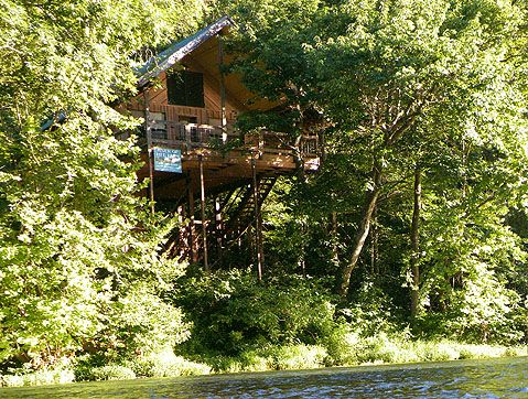 65 Best Images About Tree House Designs On Pinterest