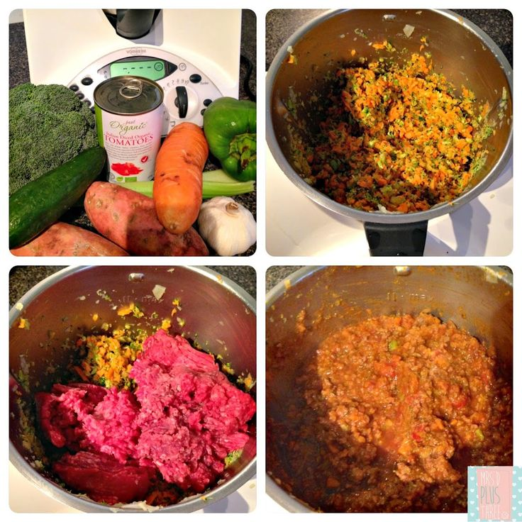 five easy kids dinners in the thermomix