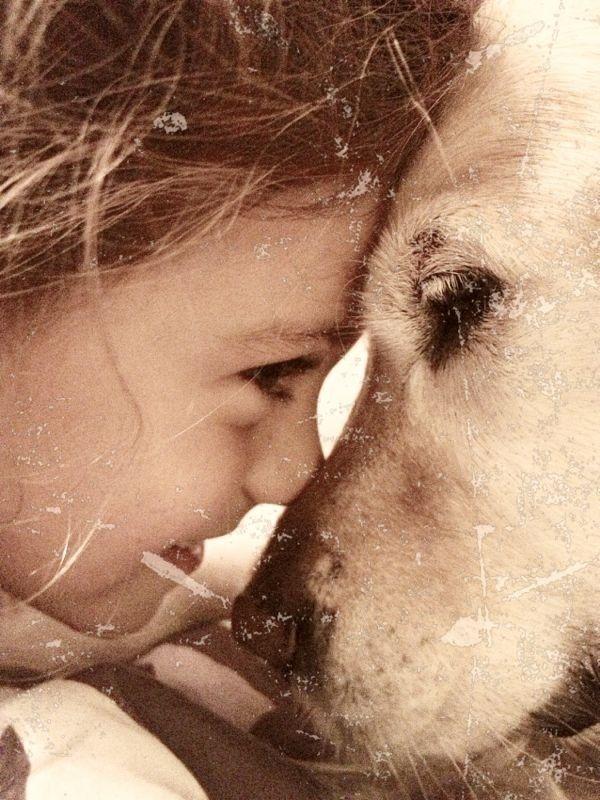 Animais e bebês podem conviver juntos? - Ariane Baldassin