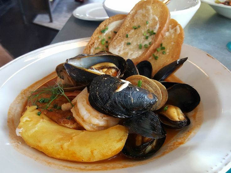 369 best sarasota area restaurants images on pinterest for Veronica fish and oyster
