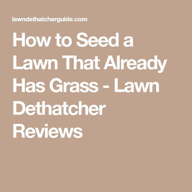 How to Seed a Lawn That Already Has Grass - Lawn Dethatcher Reviews