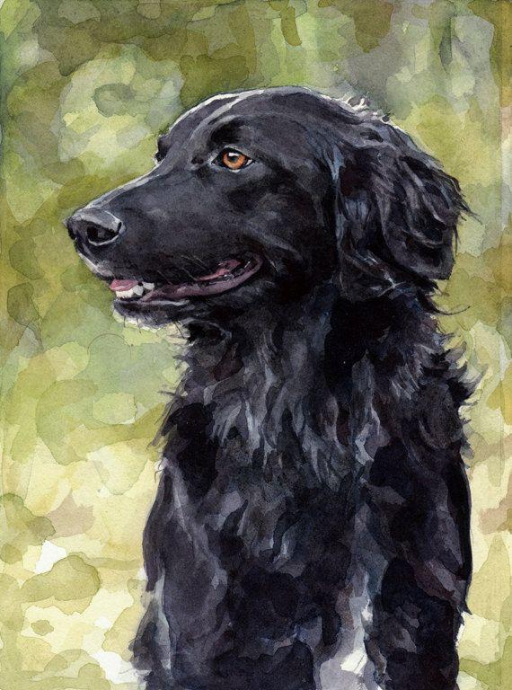 Chien aquarelle Portrait animal réaliste 5 x 7