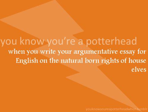 p buy argumentative essays