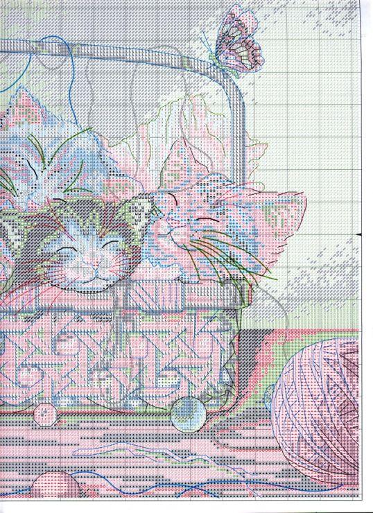 Gallery.ru / Фото #10 - Дим коты - zozo7777