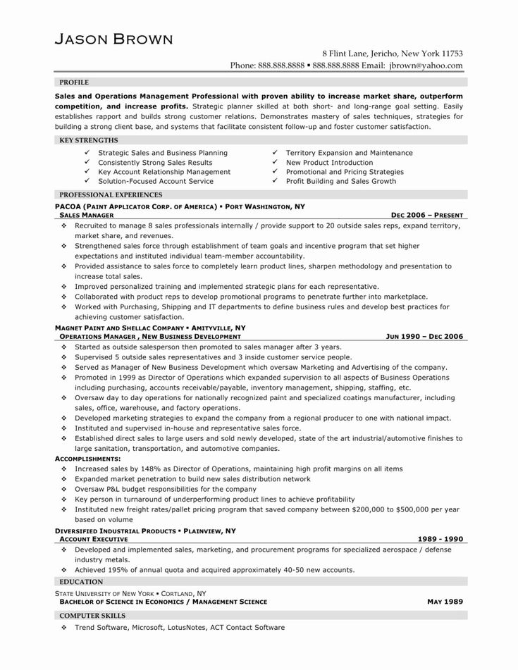 50 fresh sales account executive resume in 2020 sales