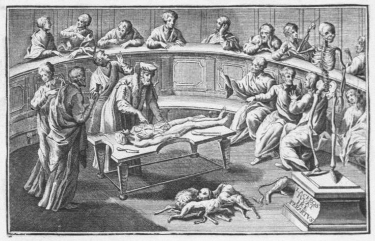 Bartolomeo Eustache (vers 1510 – 1574) procédant à une dissection, détail du frontispice des Tabulae Anatomicae, 1717 (Cote BIU Santé 1938)