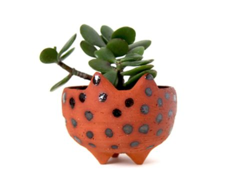 Wombat Planter Hand Made in Melbourne