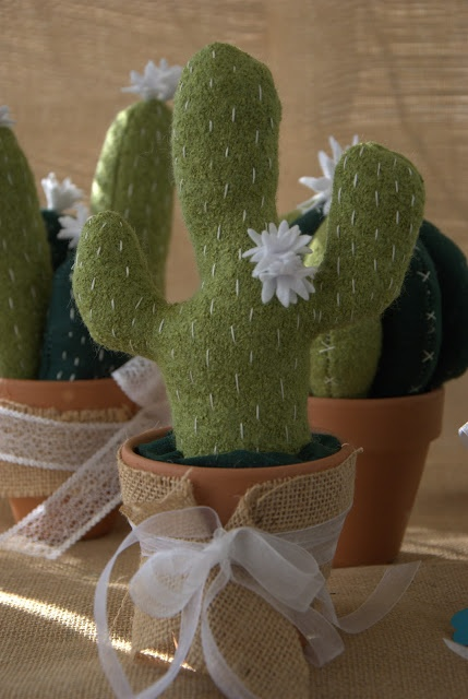 cactus succulente ... i like it !