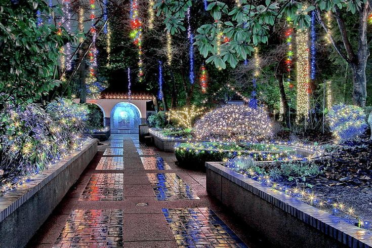 Christmas Illuminations In The Tilford Gardens Photograph by Alex Lyubar  #AlexLyubarFineArtPhotography #Christmas #VancoverCanada #TilfordGardens #HomeDecor #FineArtPrint