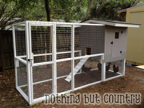 DIY chicken coop... (wanting fresh eggs)