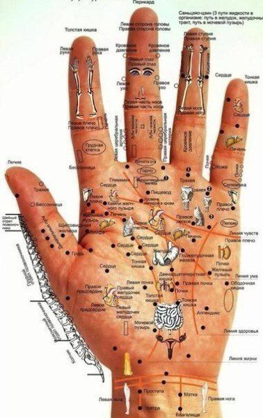 Руки — кладезь всевозможной информации: по ним, как по книге, можно узнать не только о прошлом и будущем человека, его наклонностях и характере, но и о состоянии его здоровья — стоит только внимательно к ним приглядеться. Красные ладони свидетельствуют о токсическом поражении печени: возможен гепатит или гепатоз. Мраморный рисунок на ладонях говорит о неполадках в […]