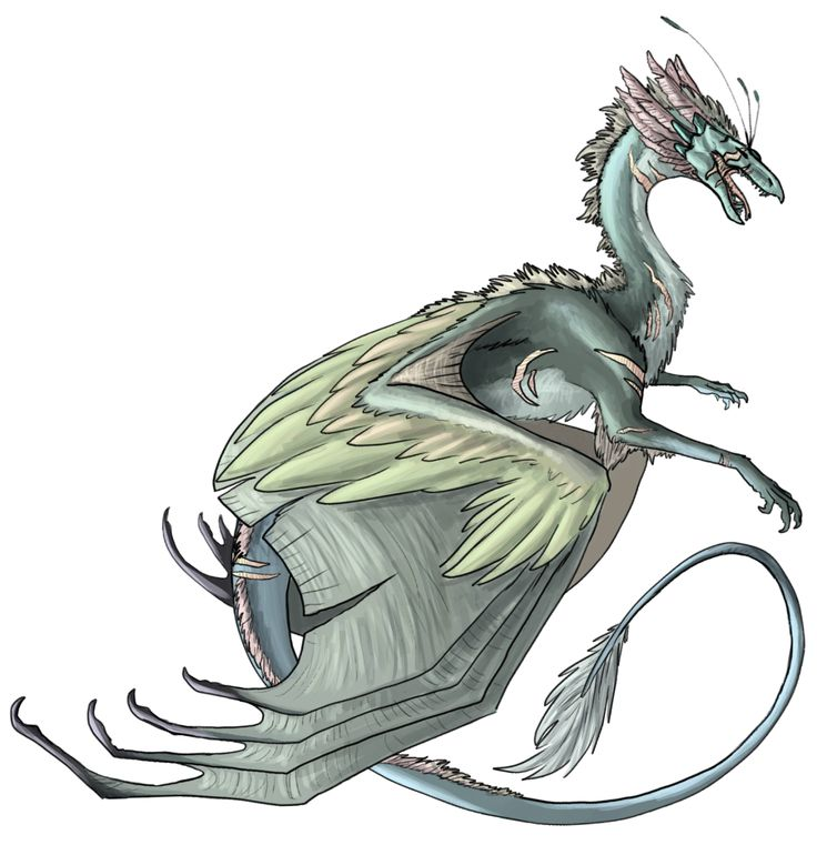 how to draw a skydancer drago
