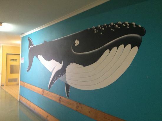 walvis muurschildering