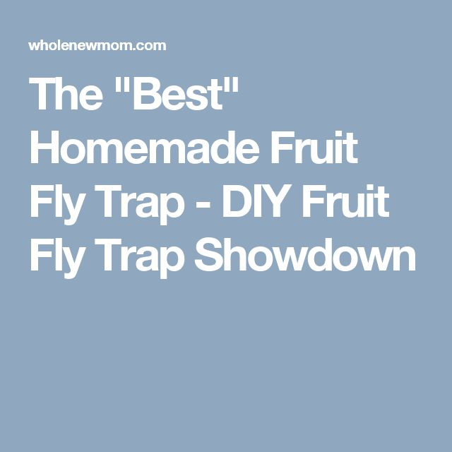 """The """"Best"""" Homemade Fruit Fly Trap - DIY Fruit Fly Trap Showdown"""