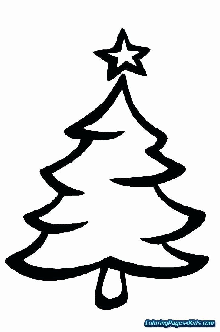 Coloring Page Of Evergreen Tree Unique Free Printable Tree Coloring Page C Christmas Tree Coloring Page Tree Coloring Page Printable Christmas Coloring Pages