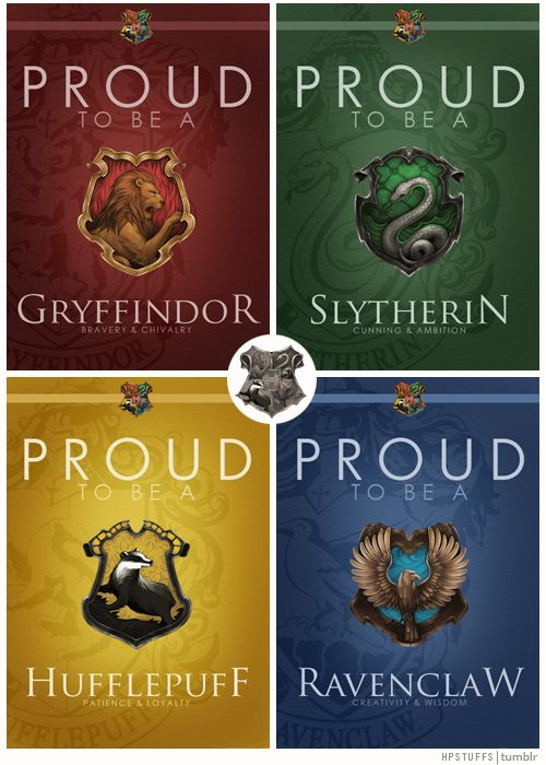 Probably a mix of Ravenclaw and Slytherin..although i wish i was Gryffindor..