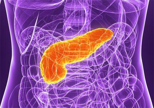 膵臓をケアする5つのアドバイス – みんな健康