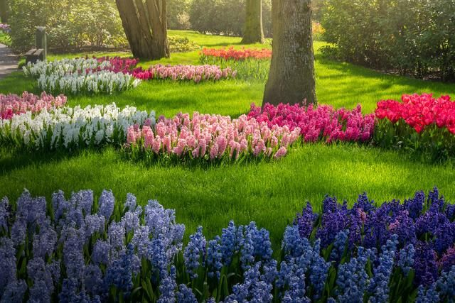 The Most Beautiful Flower Garden In The World Without People My 31 Pics In 2020 Most Beautiful Gardens Beautiful Flowers Garden Beautiful Gardens