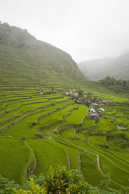25 Best Ideas About Banaue On Pinterest Banaue Rice Terraces About Philippines And Philippines