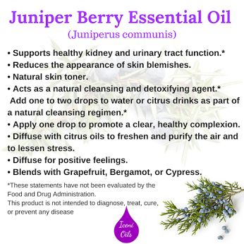 The main benefits & uses of Juniper Berry Essential Oil