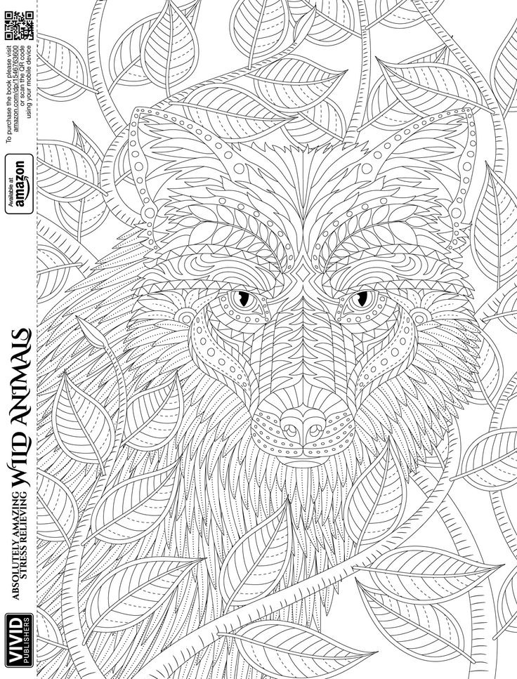 23 mejores imágenes de Adult Coloring: Absolutely Amazing, Stress ...