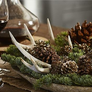 Antlers pine cones and pine on pinterest for Antlers decoration