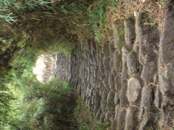 The ancient Inca controlled their empire just like the Romans: by road: Stone Paved Trail Segment, Inca Trail